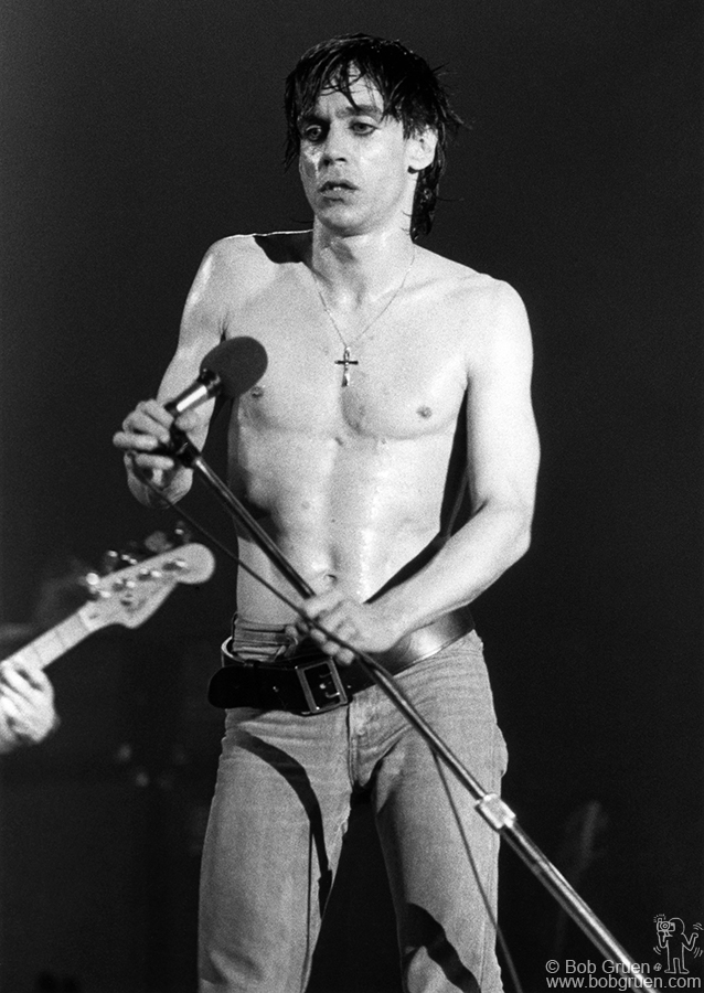 nude and rude the best of iggy pop