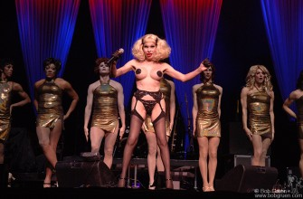 Also on June 18th, I photographed the True Colors Concert at Radio City Music Hall. The headliners were Cyndi Lauper and Deborah Harry in the show supporting Gay Rights. Amanda Lepore got the evening off to a great start with a group of dancers doing an imitation of the famous Rockettes routines.